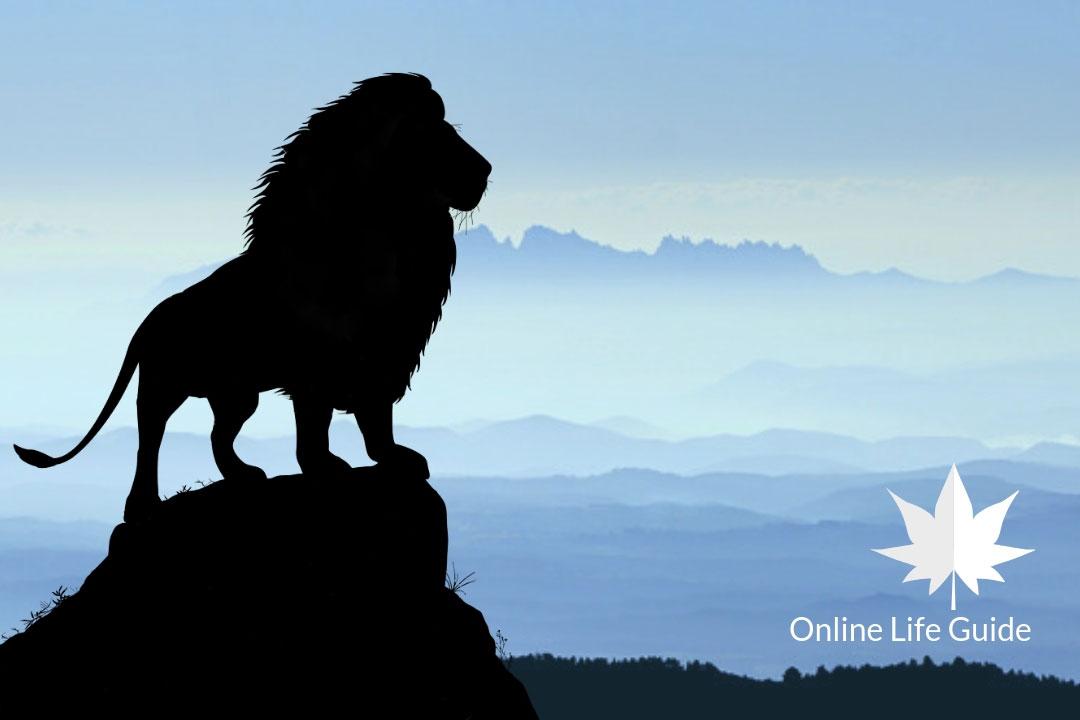 lion among sheep
