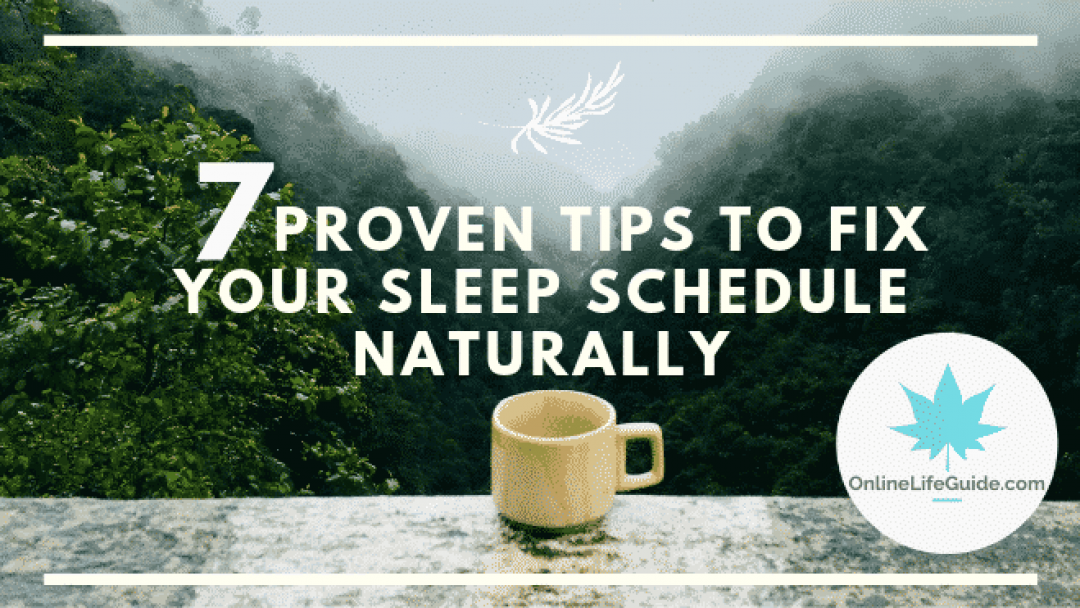 7 Tips To Fix Your Sleep Schedule and Reset Your Circadian Rhythm Naturally
